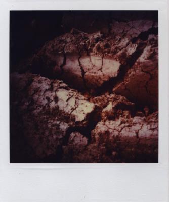 Jean-Lucien Guillaume : Paysage en exposition
