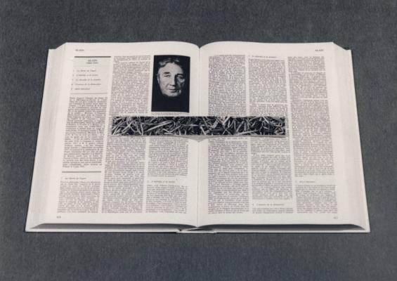 Jean-Lucien Guillaume : série : Universalis
