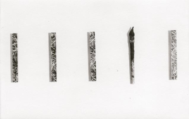 Jean-Lucien Guillaume : ASP44, pictura defecit