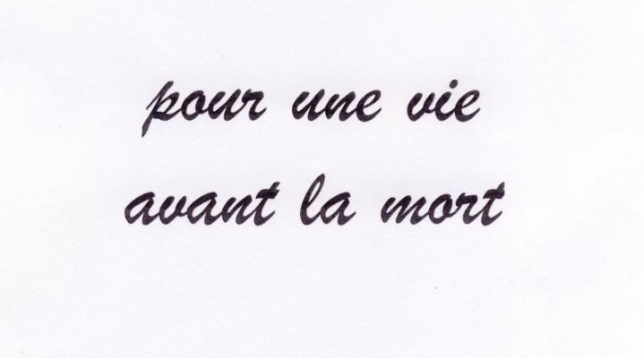 Jean-Lucien Guillaume : ... avant la mort